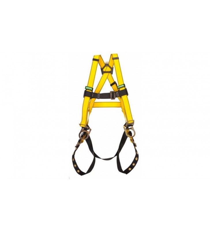 Harness 1, 3 and 4 workman rings MSA - 3