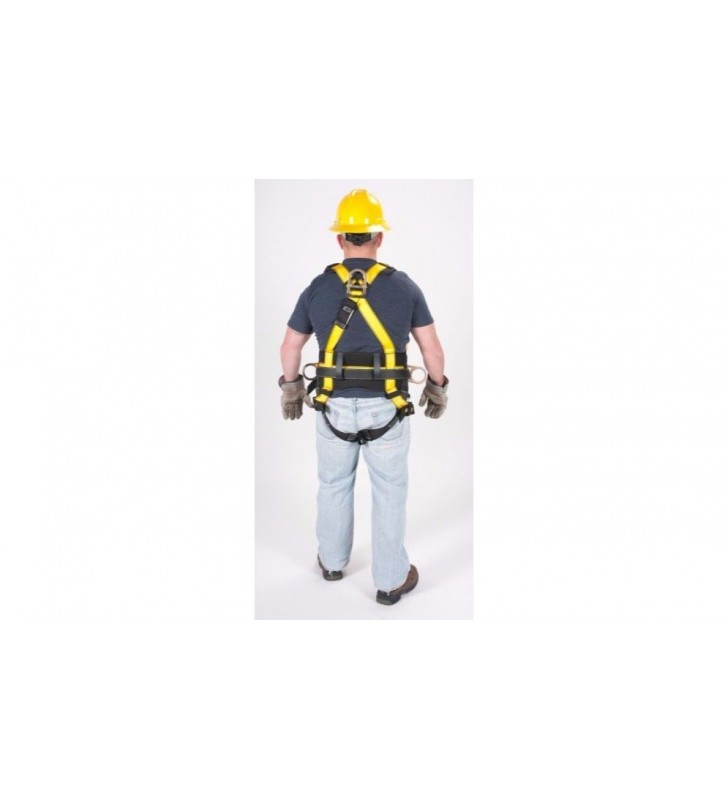 Harness 1, 3 and 4 workman rings MSA - 5