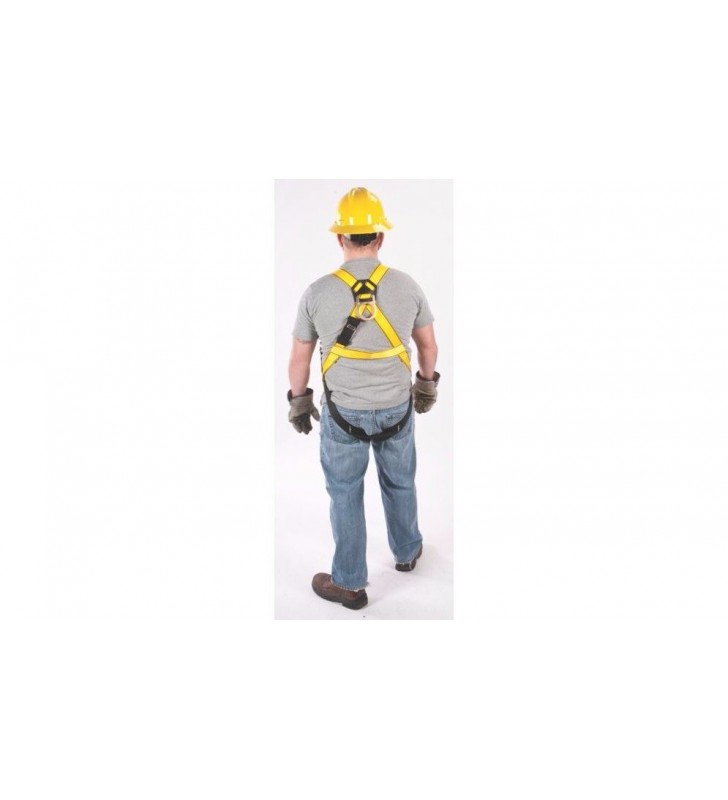 Harness 1, 3 and 4 workman rings MSA - 7