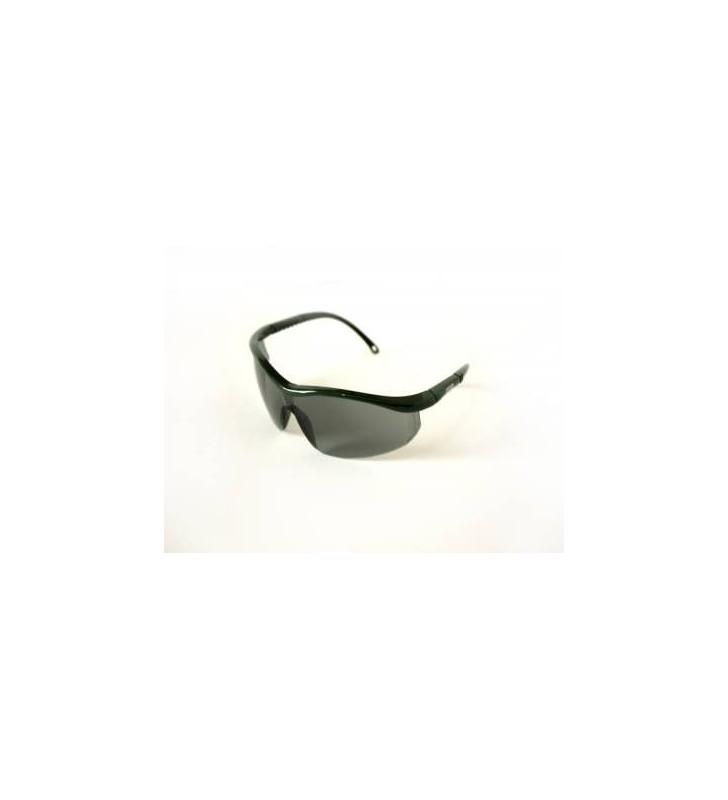Glasses Msa Sierra Elite Clear Lens Anti-fog REF 2803250  - 1