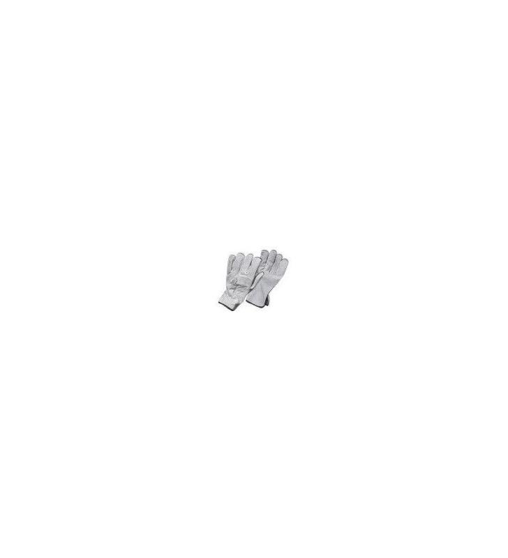 Carnaza Standard Glove (N) Steelpro - 1